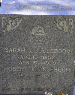 Robert J Cosseboom
