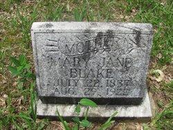 Mary Jane <i>Surber</i> Blake