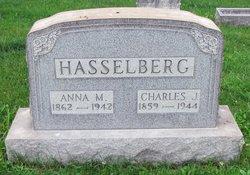 Anna M Hasselberg