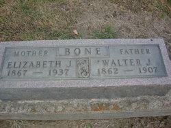 Walter J Bone