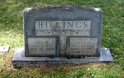 Bird Washington Billings