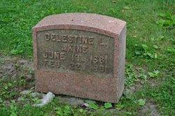 Celestine Lester Akins