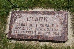 Ronald N. Clark