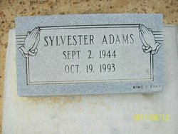 Sylvester Adams