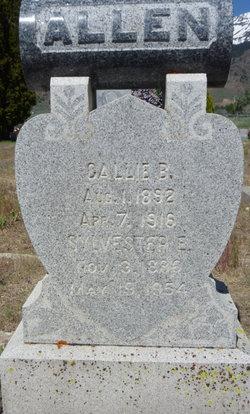 Sylvester E Allen