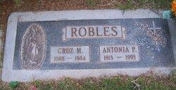 Cruz Medrano Robles