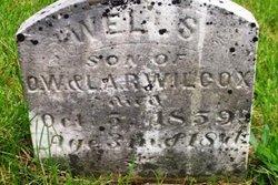 Wells Wilcox