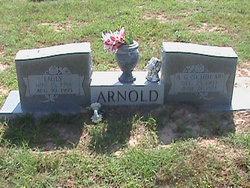 Alfred Globe Scholar Arnold