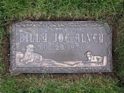 Billy Joe Alvey