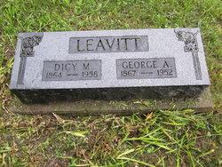 Lucy Melvina Dicy <i>Holloway</i> Leavitt