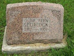 Olive Fern <i>Cook</i> Scurlock
