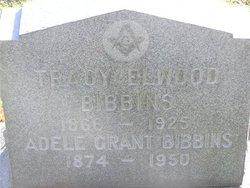 Tracy Elwood Bibbins