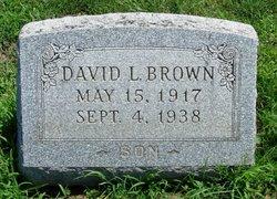David L Brown