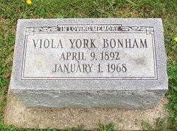 Viola <i>Watts</i> York