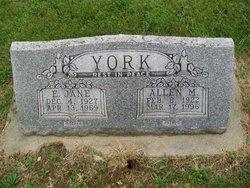 Allen M. York