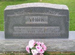 Ulysses Grant York