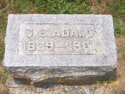 Sarah Elizabeth Adams