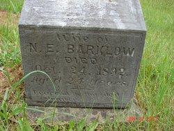 Ella E. Barklow