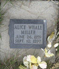 Alice <i>Whale</i> Miller