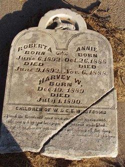Annie Whitcomb