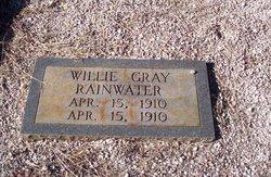Willie Gray Rainwater