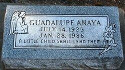 Guadalupe Anaya