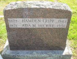 Hamden Tripp
