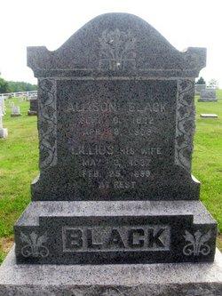Lillius <i>Edwards</i> Black