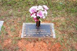 Sue Lilley Britt