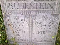 Gertrude Bluestein