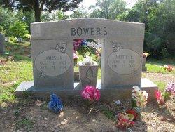 Nettie L Bowers