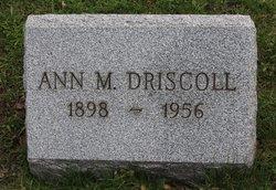 Ann M. Driscoll
