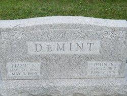 Elizabeth A Demint