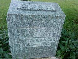 Lesette Olympia <i>Mouser</i> Bear