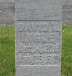 David M Ingle