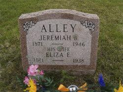 Eliza Evelyn <i>Drisko</i> Alley