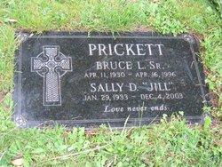 Sally Lynn Jill <i>Davison</i> Prickett