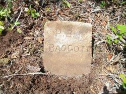 Preston Brooks Baggott