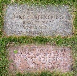 Jake H Bekkering