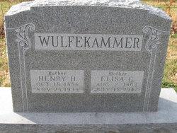 Elisa C. <i>Larberg</i> Wulfekammer