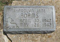 Sharolyn Jane Adams