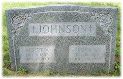 Albert V. Johnson