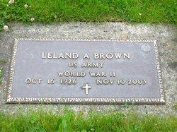 Leland Andrew Brown