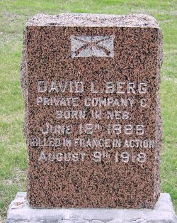 David L Berg