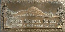 Gavin Michael Briggs