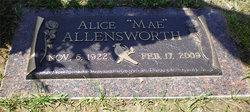 Alice Mae <i>Starmer</i> Allensworth