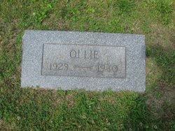 Ollie Black