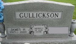 James H Gullickson