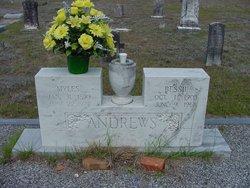 Bessie <i>Stephens</i> Andrews