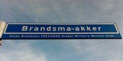 Corp Halbe Brandsma